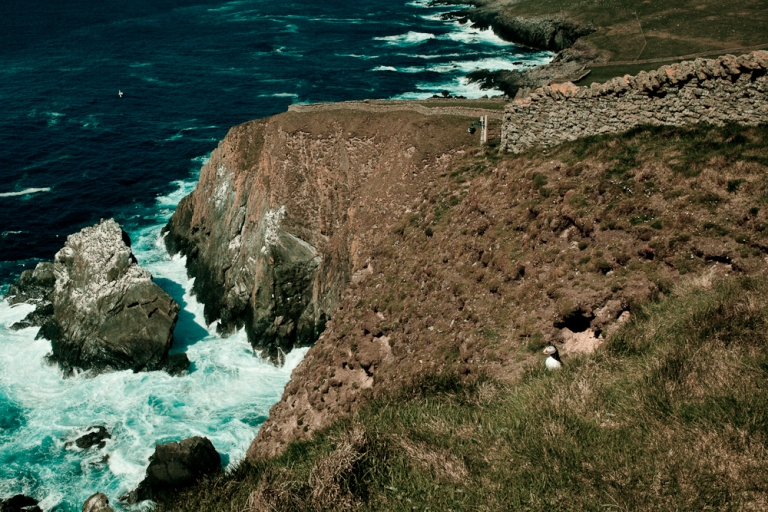 Puffin in Shetland