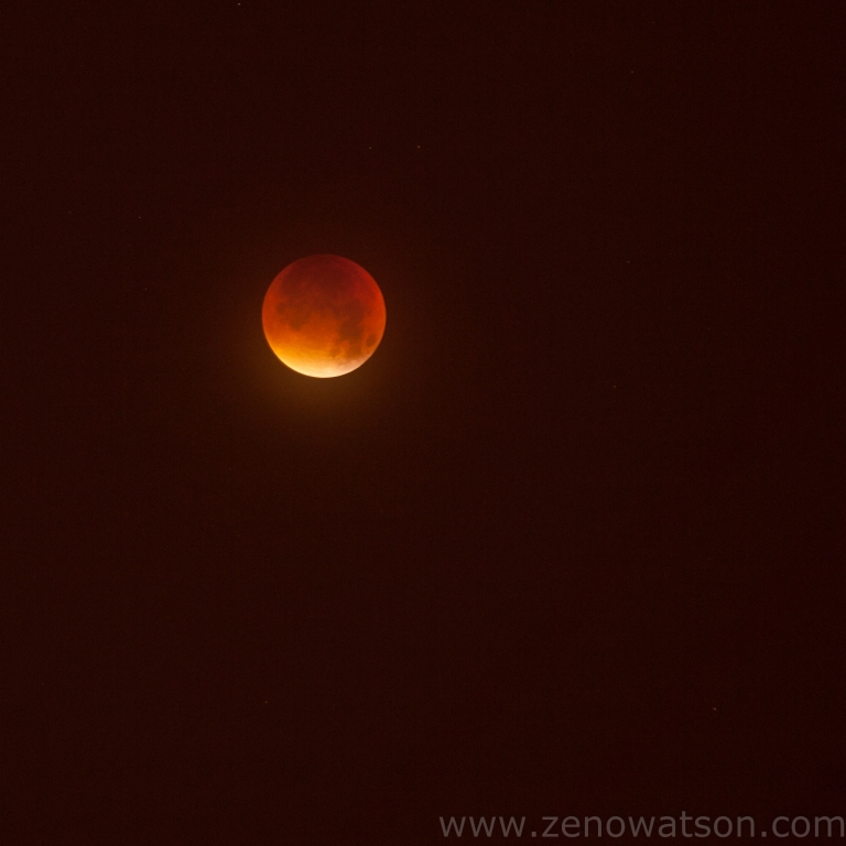 Blood Red Moon By Zeno Watson
