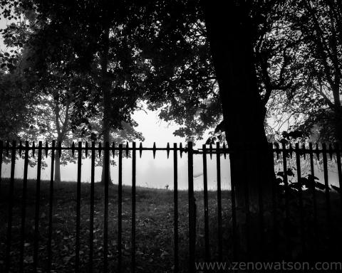 TheFog by Zeno Watson-0003278