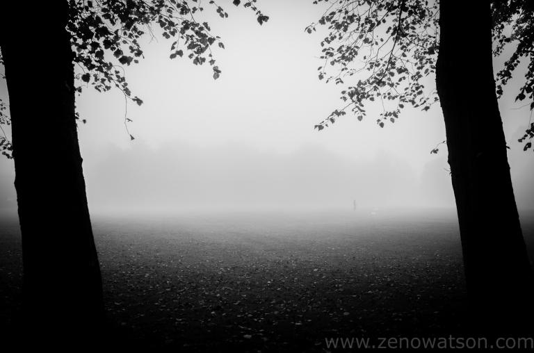 TheFog by Zeno Watson-0003288