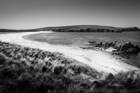 Shetland-4787
