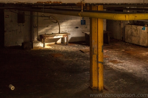Botanic Garage By Zeno Watson-3765