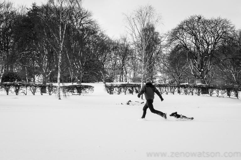 Snowfall in Scotstoun By Zeno Watson-4078
