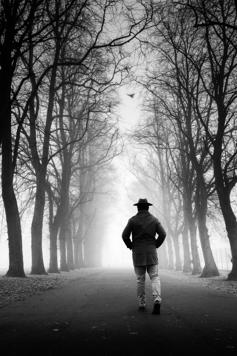 Fog By Zeno Watson-2728