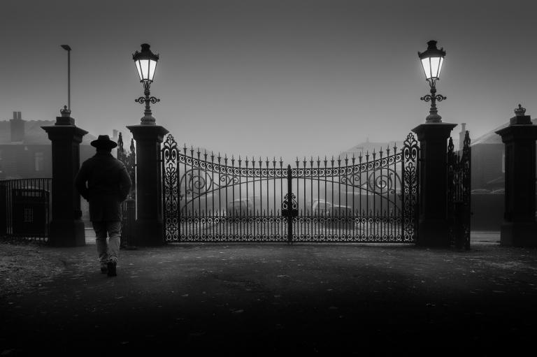 Fog By Zeno Watson-2734